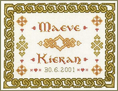 Celtic knotwork wedding sampler - complete cross stitch kit on 14 aida with clear COLOUR chart