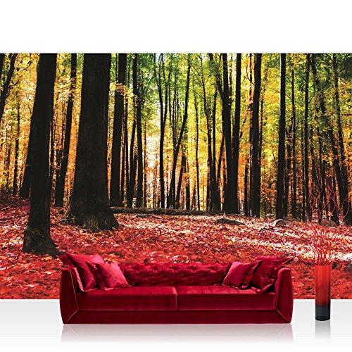 papel-pintado-fotografico-premium-plus-pared-papel-pintado-fotografico-cuadro-de-papel-pintado-bosqu