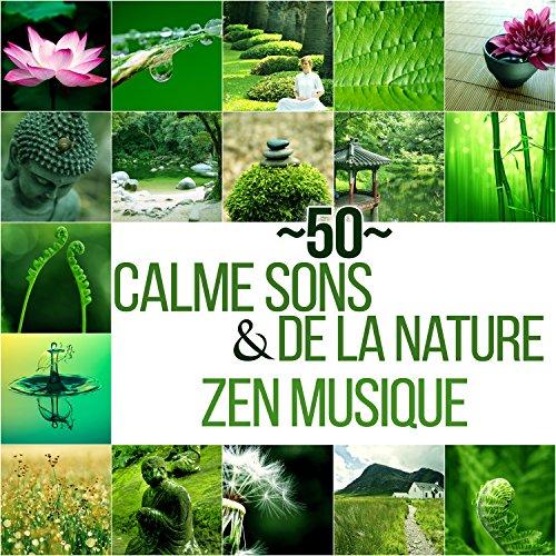 musique relaxation zen nature