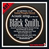 Black Smith 10-47 Coated Jeu de 12 Cordes pour Guitare acoustique