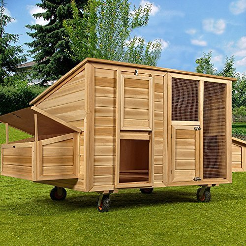 h hnerstall f r 5 h hner so sollte er aussehen gr e. Black Bedroom Furniture Sets. Home Design Ideas