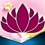 Lotus-Ernte-Foto