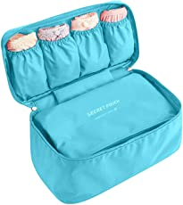 House of Quirk Polyester and Nylon Undergarments and Innerwear Storage Bag (Sky Blue)