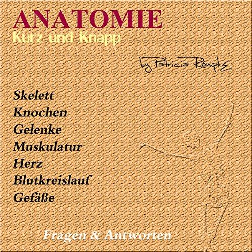 Anatomie Fragen Und Antworten