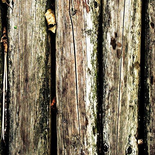 Apple iPhone 5s Housse Étui Protection Coque Planches Marais Marécage Mousse Look bois Étui en cuir marron