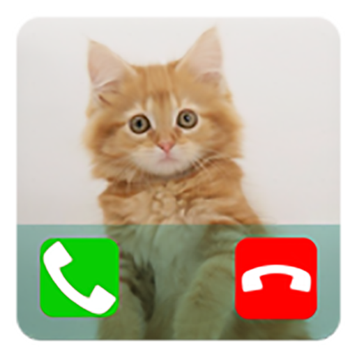 Fake Call From Cat Prank ( Funny Calling Prank From Pet )