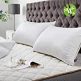 BedStory Oreillers Bambou 50x70 Lot de 2 avec Taies Antiacariens Amovibles, Oreillers Anti Acariens avec Garnissage 10% 7D et