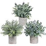 مجموعة مكونة من 3 اوعية من نباتات الاوكالبتوس واكليل الجبل الخضراء الاصطناعية لتزيين المنزل والمكتب وغرف الاستحمام من وينلين