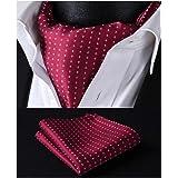 HISDERN Set fazzoletto Jacquard intessuto fazzoletto da taschino e fazzoletto ascot a pois