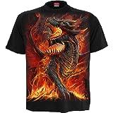 Spiral Draconis Hombre Camiseta Negro, Regular