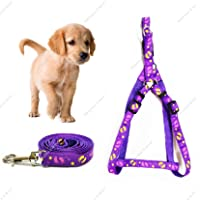 Petlicious & More 15 mm Printed Nylon Puppy Harness & Leash Set for Small & Medium Dogs - Purple