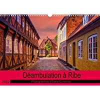 Déambulation à Ribe (Calendrier mural 2022 DIN A3 horizontal)