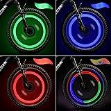 TAGVO 4pcs Bike Spoke Light(Red+Green+Blue+Multicolour) with Delicate Box,Waterproof Easy Install Wheel Spoke Lights LED Neon