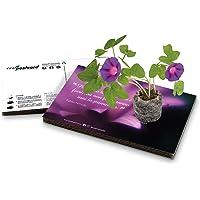 Eco-Postcard   Biglietto d'auguri con citazione di Pablo Neruda e semi di Tagete   Regalo ecologico crescita pianta di…