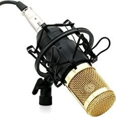 Powerpak BM 800 Black Silica Gel Professional Condenser Microphone Mic Sound Studio Recording Dynamic (Requires phantom power)