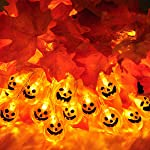 Halloween Lights Outdoor 20 LED 3D Pumpkin Halloween String Lights Decorations Battery Operated for Halloween Decorations...