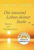 Die tausend Leben deiner Seele: Karma und Reinkarnation