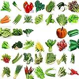 Jardín Vegetal Verde Semillas chinas orgánicas 40 Variedades diferentes Cantidad 22000+ para plantar Puerta exterior para coc