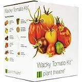 Plant Theatre Wacky Tomato Kit - 6 Weird & Wonderful Varieties to Grow - Great Gift