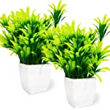 WoodZone Set of 2 Indoor Plant Artificial with Pot for Home Decoration Items | Artificial Green Plants | Artificial…