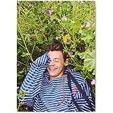 Festival-Geschenk DIY 5D-Diamant-Malerei-Set Harry Styles britischer S/änger Portrait runde Perlen Stickerei Mosaik Kunst f/ür Erwachsene Entspannung und Zuhause Wanddekoration 30 x 55 cm