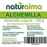 ALCHEMILLA (Alchemilla vulgaris) erba in taglio tisana NATURALMA | 100 g | Ideale per infusi, decotti, macerati e tisane | Ve
