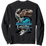 Jurassic World Paint Swipe Dinosaur Grid Sweatshirt