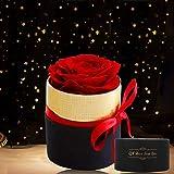 Rosa Eterna,KIPIDA Rose stabilizzate Fatte a Mano,Mini Scatola Regalo Rosa eterna,Fiore Mai Appassito,Rosa Rossa Ragazze Rega