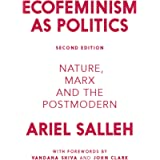 Ecofeminism as Politics: Nature, Marx and the Post Modern