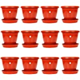 Gate Garden Plastic Gamla/Planter/Pot with Bottom Plate, 8-inch -Pack of 12 (Red/Terracotta)