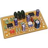 WEON Single Supply Sub Woofer Filter Board with Double IC's, (Real BASS, Up to 3X Gain)