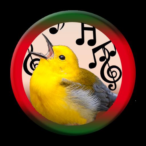 Crow Bird Call (Birds Calls Sounds)