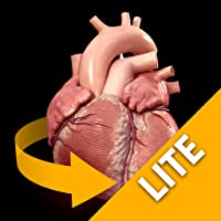 Heart - 3D Atlas of Anatomy - Lite Version