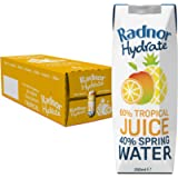 Radnor Hydrate 24x250ml Tropical Tetra Pak