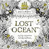 Lost Ocean: An Underwater Adventure and Coloring Book