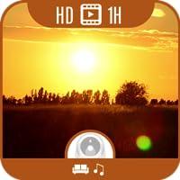 Summer Dreams HD [1+ Stunde Video & Musik]