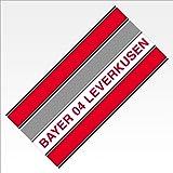 Bayer 04 Leverkusen Handtuch Senkrechtstreifen