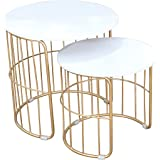 PRITI Nature Lover Golden Coffee Table Nesting Table Set of Two