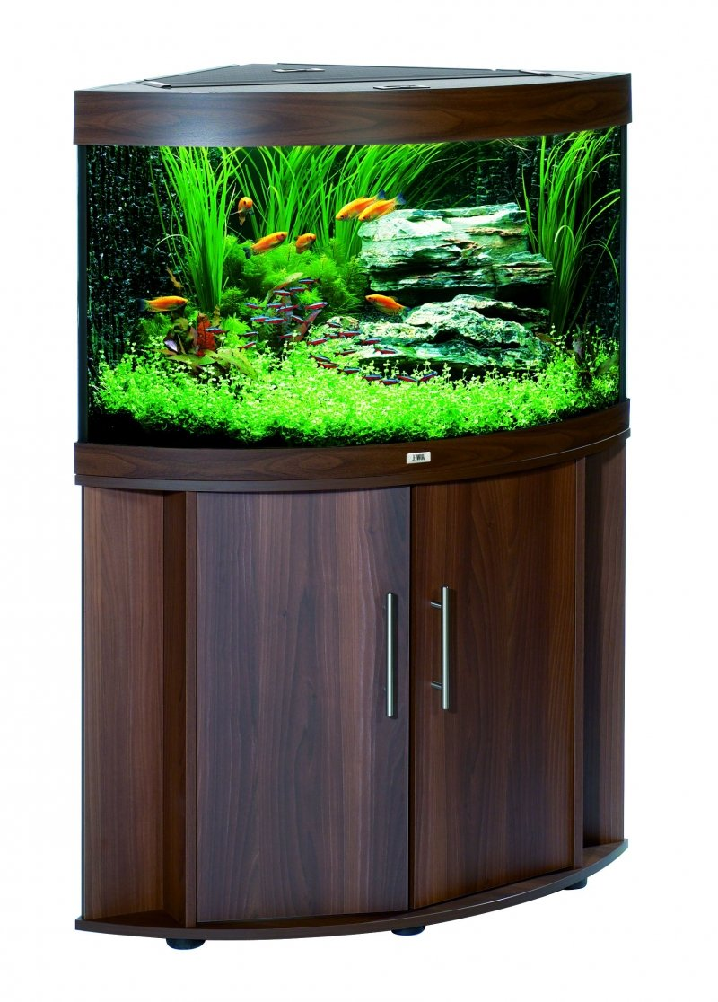 Juwel Aquarium 16300 Trigon 190, schwarz: Amazon.de: Haustier
