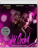 Wild Orchid [Import anglais]