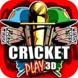 Cricket Play 3D - Live The Game (World Team Challenge '14 Free)