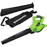 Greenworks Tools GD40BV Aspirador inalámbrico y soplador de hojas 2 en 1 (Li-Ion 40 V 280 km/h velocidad del aire, 45 l bolsa