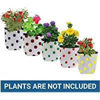Trust Basket Dotted Grow Bags (Multicolour, Pack of 5)