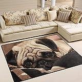 Use7 Söt mops hund område matta mattor för vardagsrum sovrum 160 cm x 122 cm (5,3 x 4 fot)