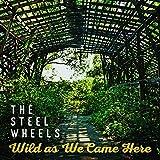 Steel Wheels: Wild As We Came Here (Audio CD)