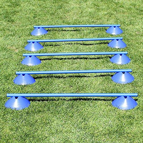 Bild von: Mini-Hürden, 5er Set, mit Blauen Markiermulden und Stangen 100 cm, für Agility - Hundetraining (blau)