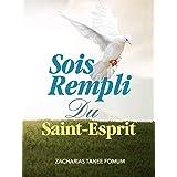 Sois Rempli du Saint-Esprit (Aide Pratique Dans la Sanctification t. 7)