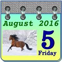 Calendar My Horses