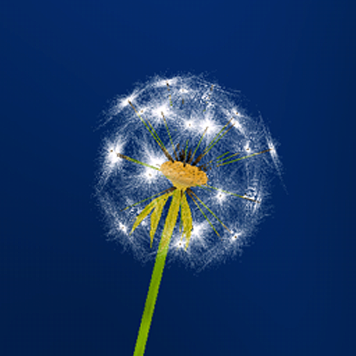 Dandelion Wonder Live Wallpaper
