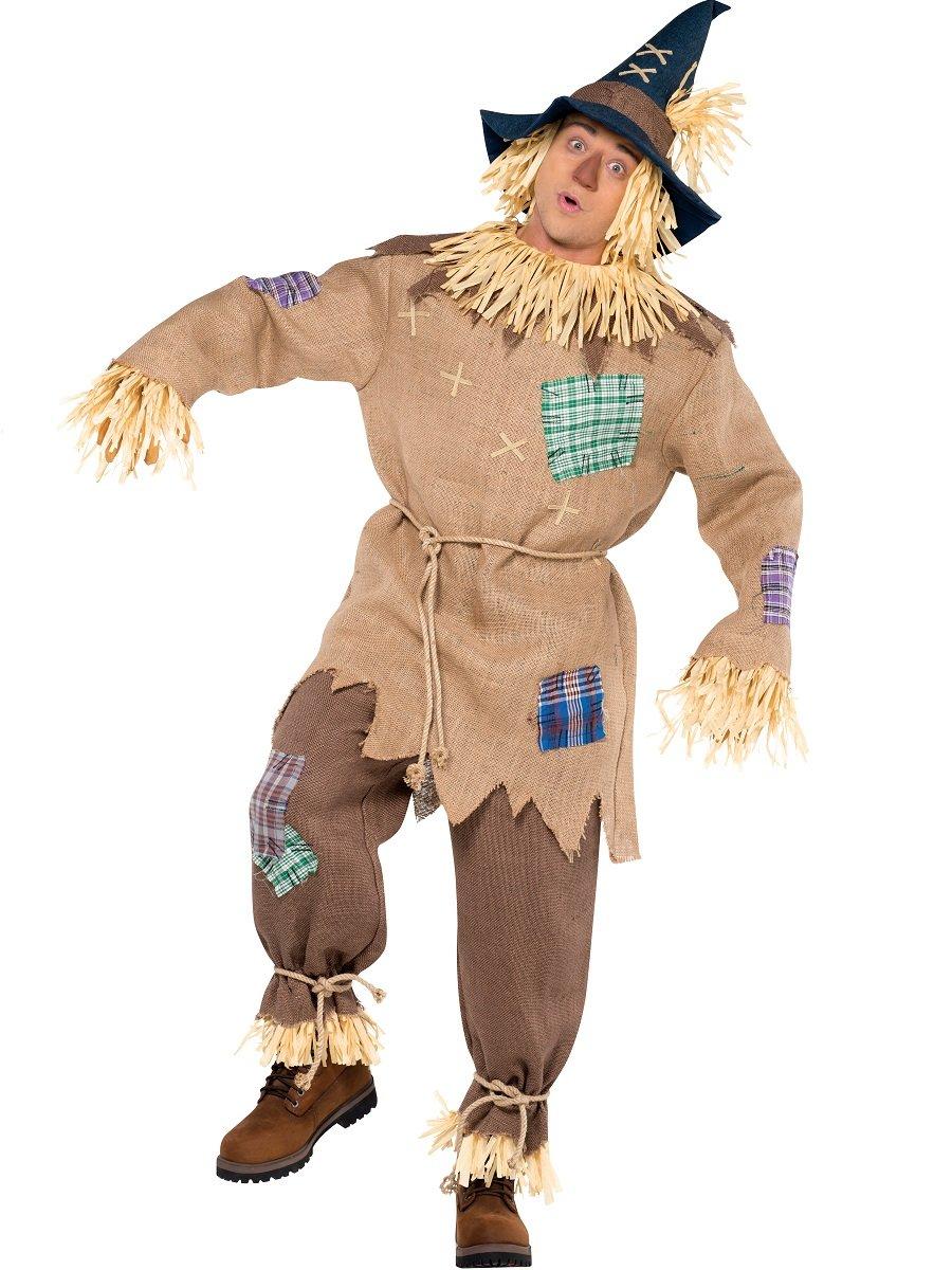 Scarecrow Mens Fancy Dress Halloween Fairytale Book Week Adults ...